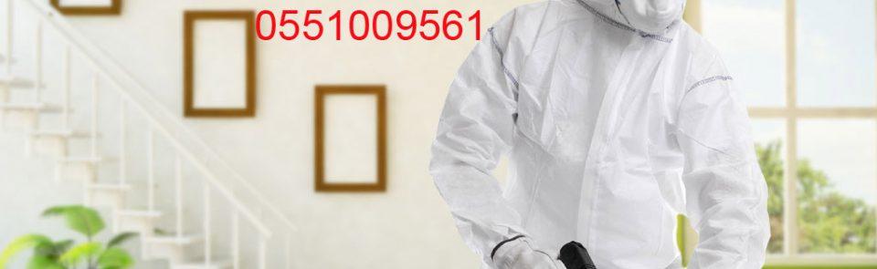شركة مكافحة حشرات بالرياض-الطيار-0551009561